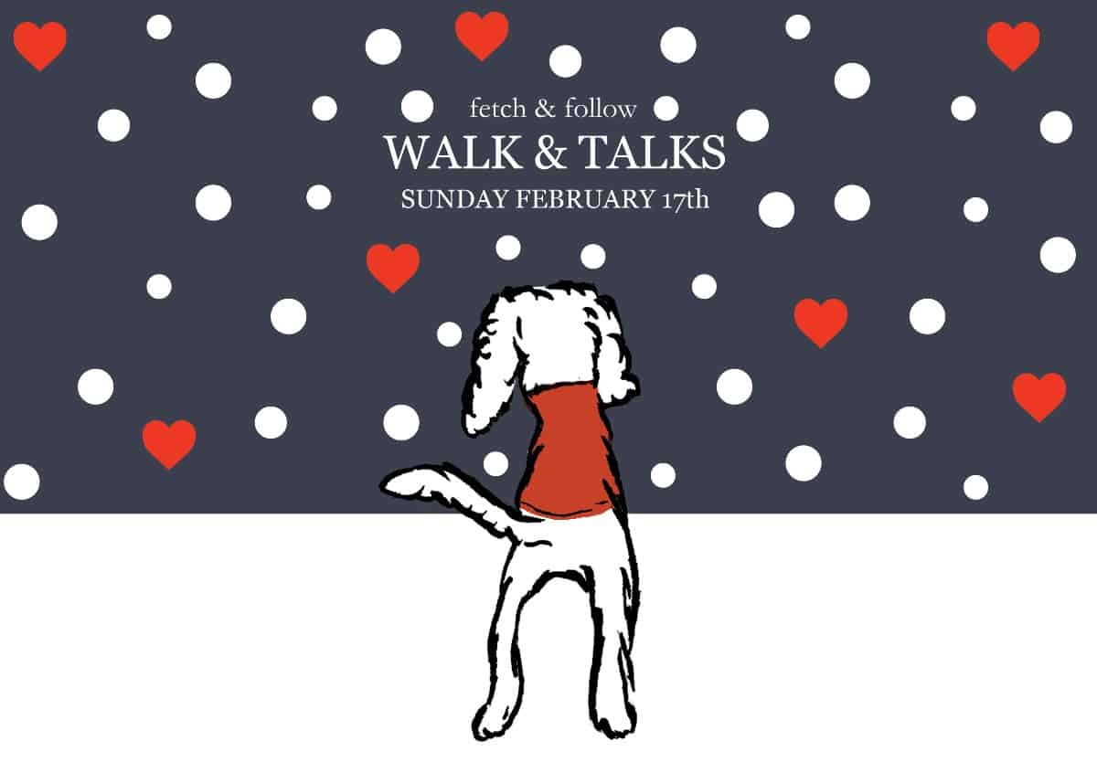 Fetch & Follow Walk & Talk February 2019