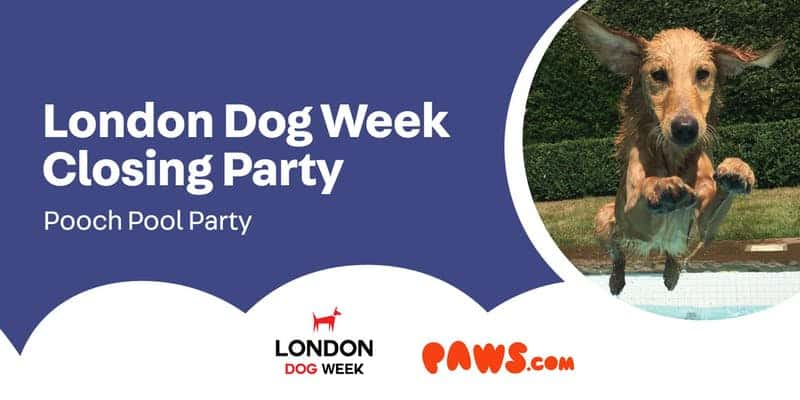 London Dog Week Closing Party