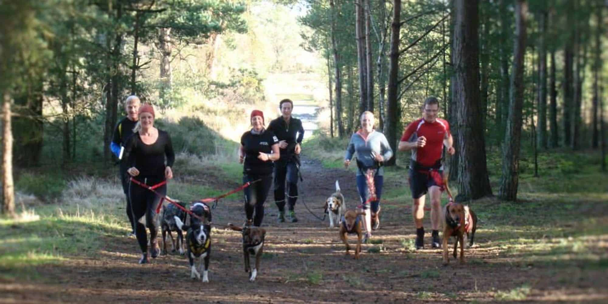 Run The Pack Hampstead Heath - Run the Pack LDN