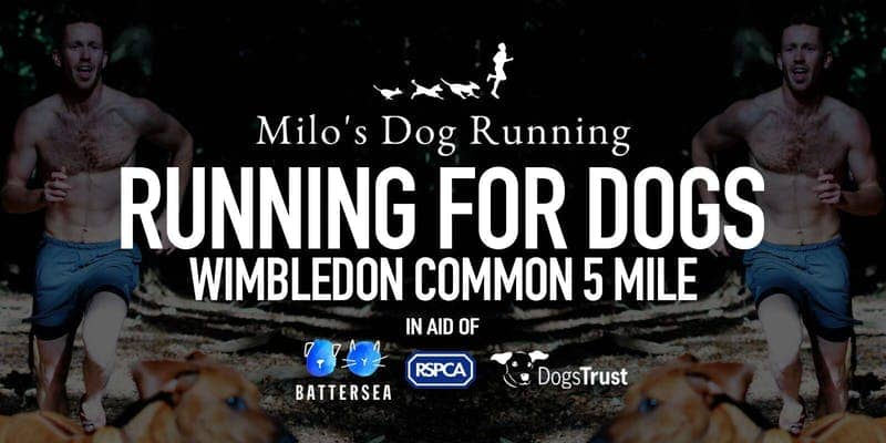 Running for Dogs Wimbledon