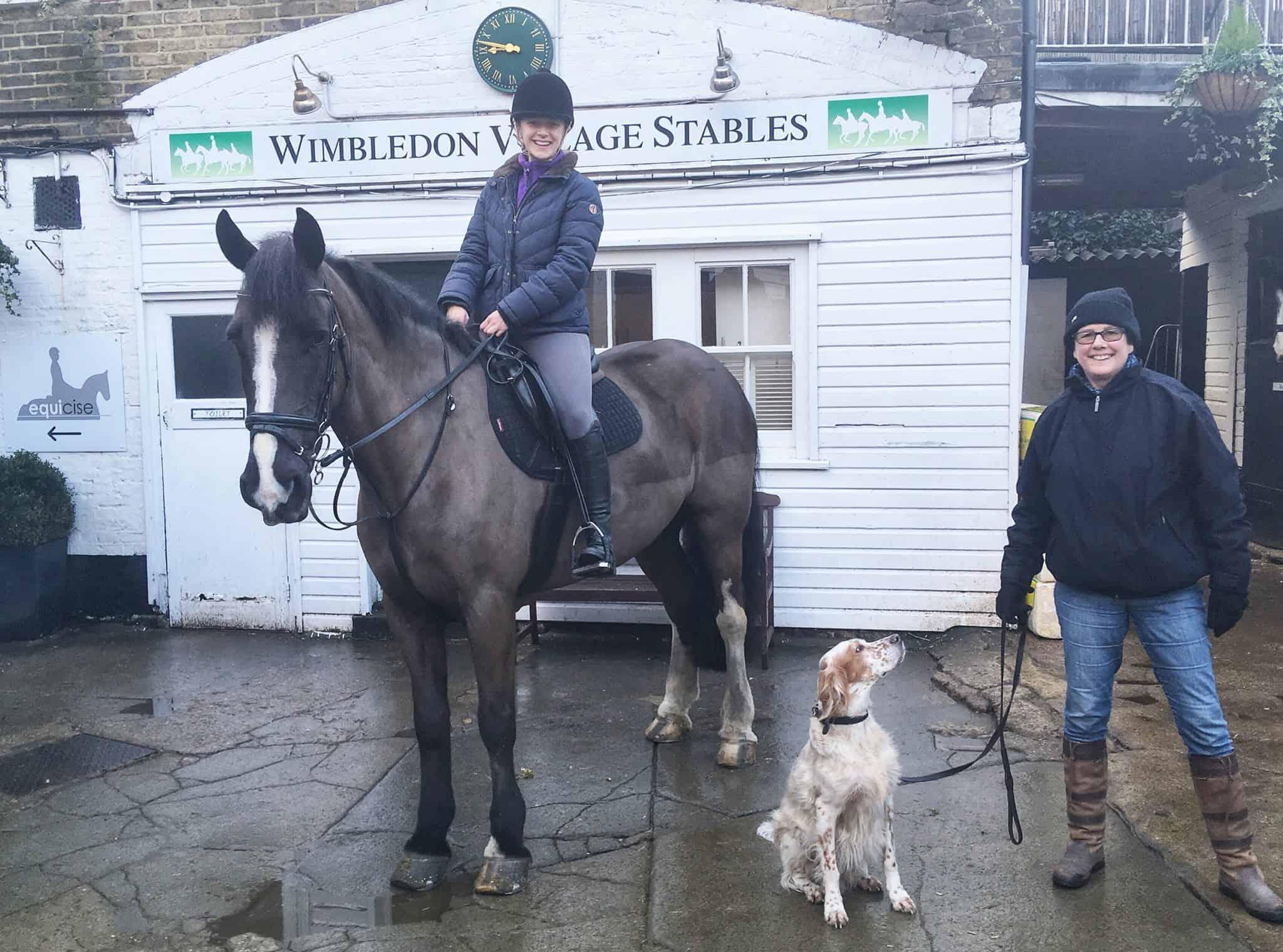 Wimbledon Common Dogs & Horses Training Session