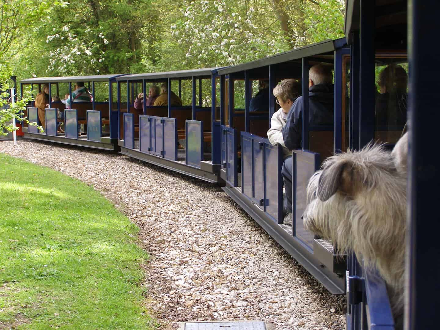 7 Dog-Friendly Things to Do In The New Forest - Dog-friendly Railway at Exbury Gardens