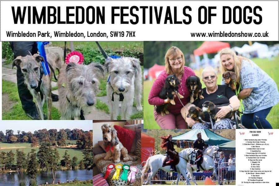 Wimbledon Festivals of Dogs 2019