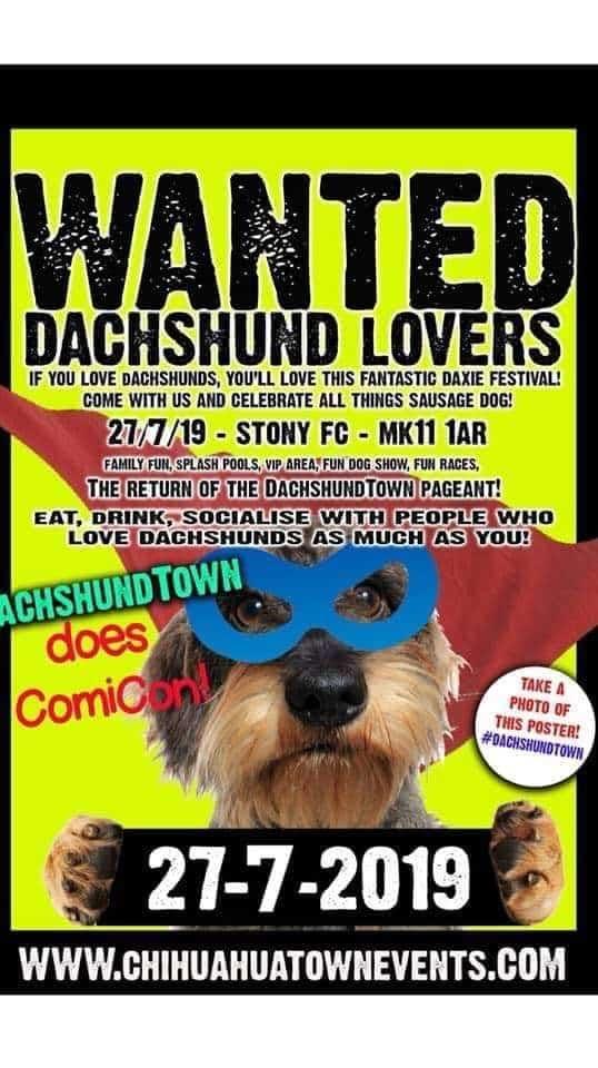 Dachshund Town Festival 2019