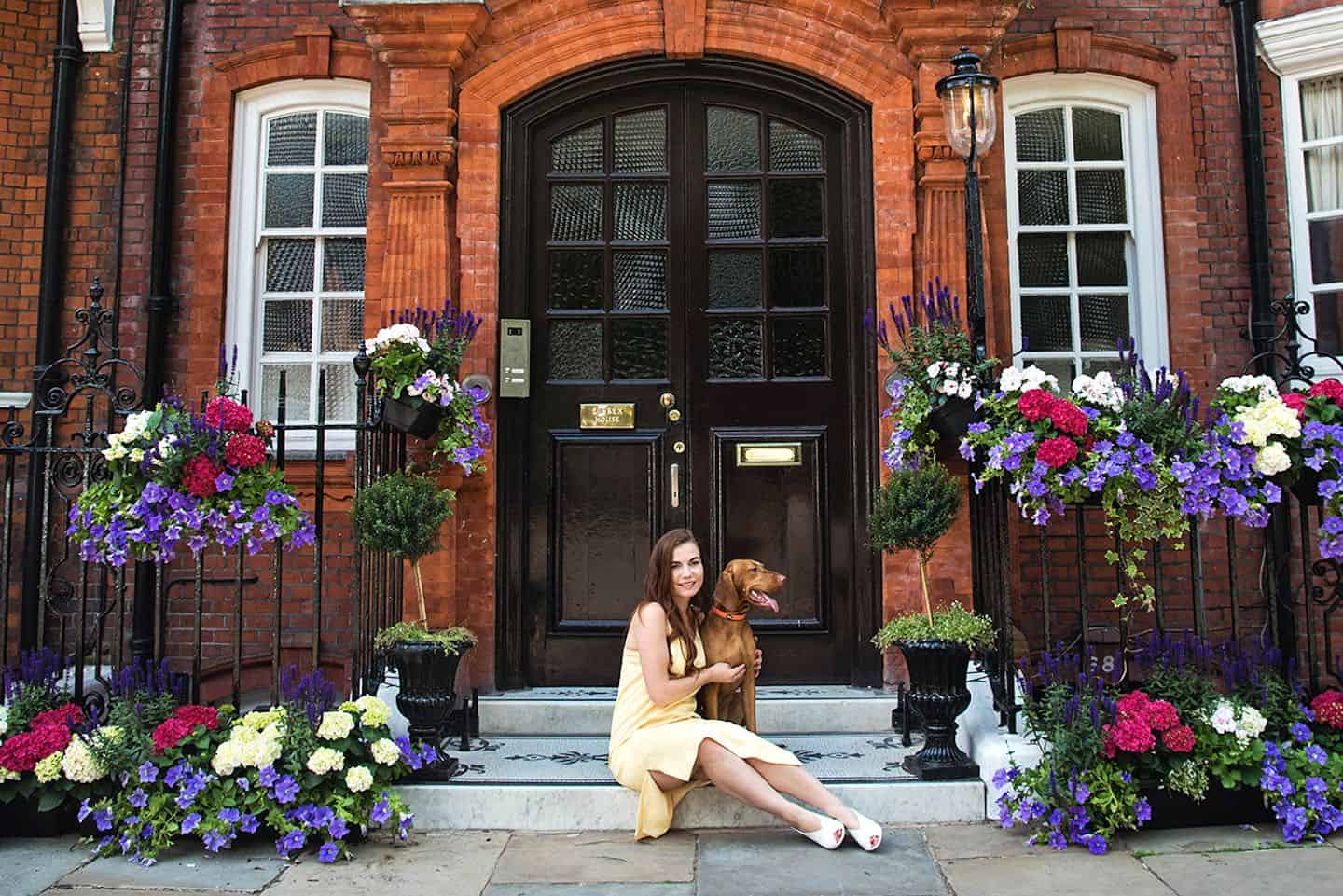 Dog Events In London This Month April 2019 - Chelsea Hounds Photo Walk