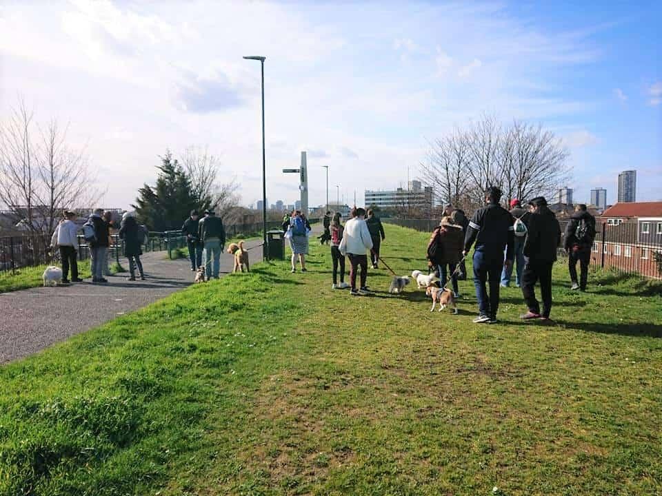 Newham Group Dog Walk Plaistow Park