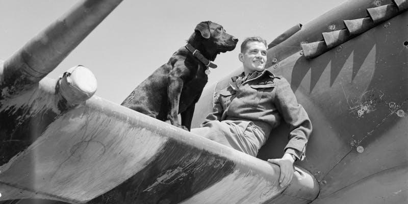 RAF Kenley Pilots and Pets Tour