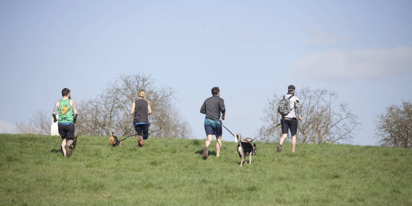 Run The Pack Epping Forest