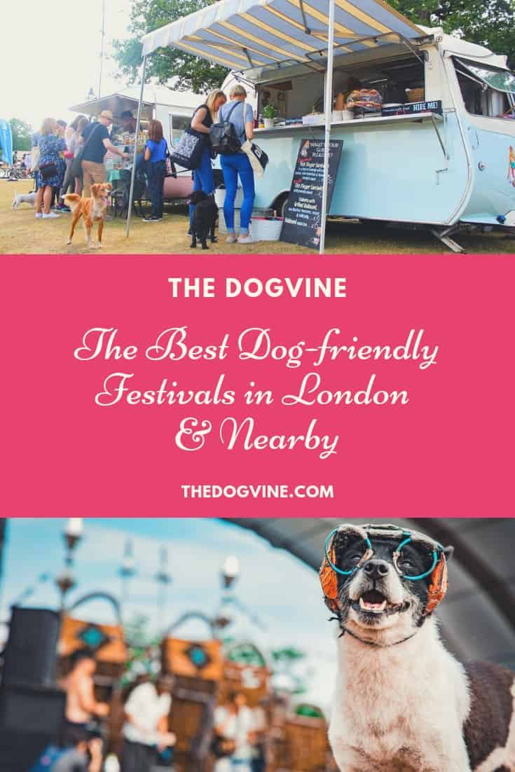 The Best Dog-friendly Festivals in London And Nearby Cover