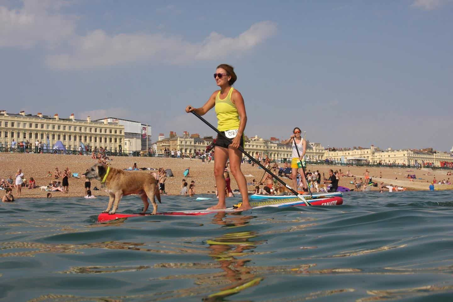 The Best Dog-friendly Festivals in London And Nearby - Paddle Around The Pier 1