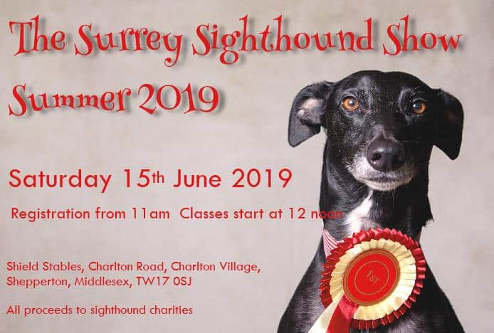 The Surrey Sighthound Summer Dog Show 2019
