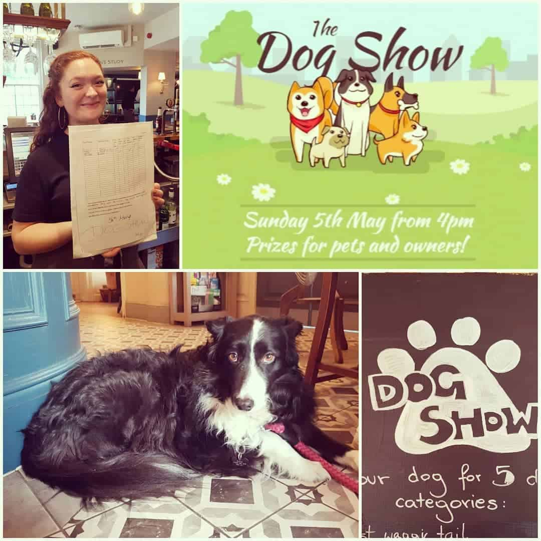 The Wood House Dog Show 2019
