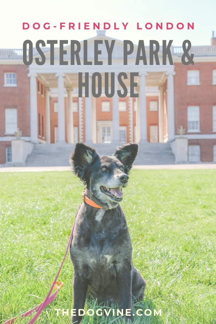 Dog-Friendly Osterley Park and House - All You Need To Know When Visiting With Your Dog