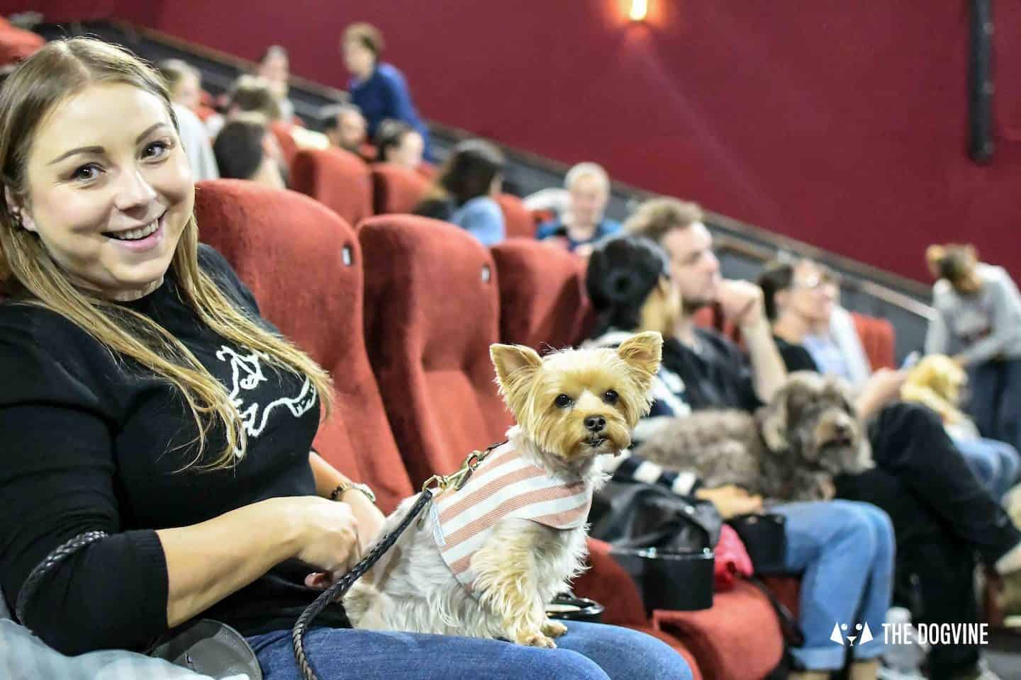 Dog-friendly Events and Things to do in May - Dog-Friendly Cinema
