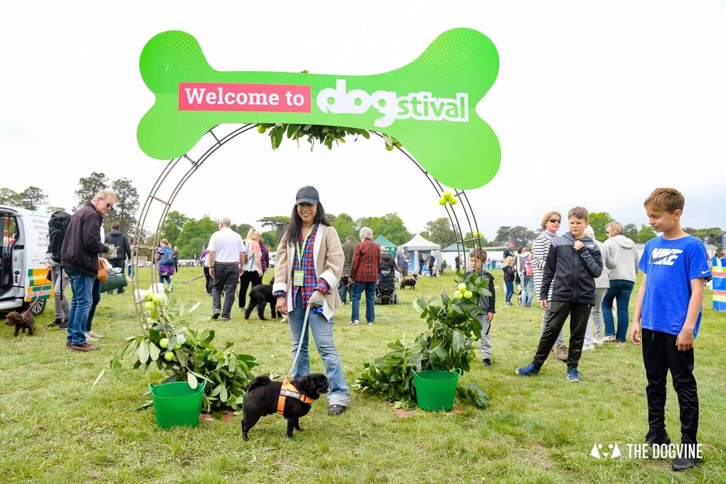 Dogstival New Forest Dog Festival Is A Barking Success 11