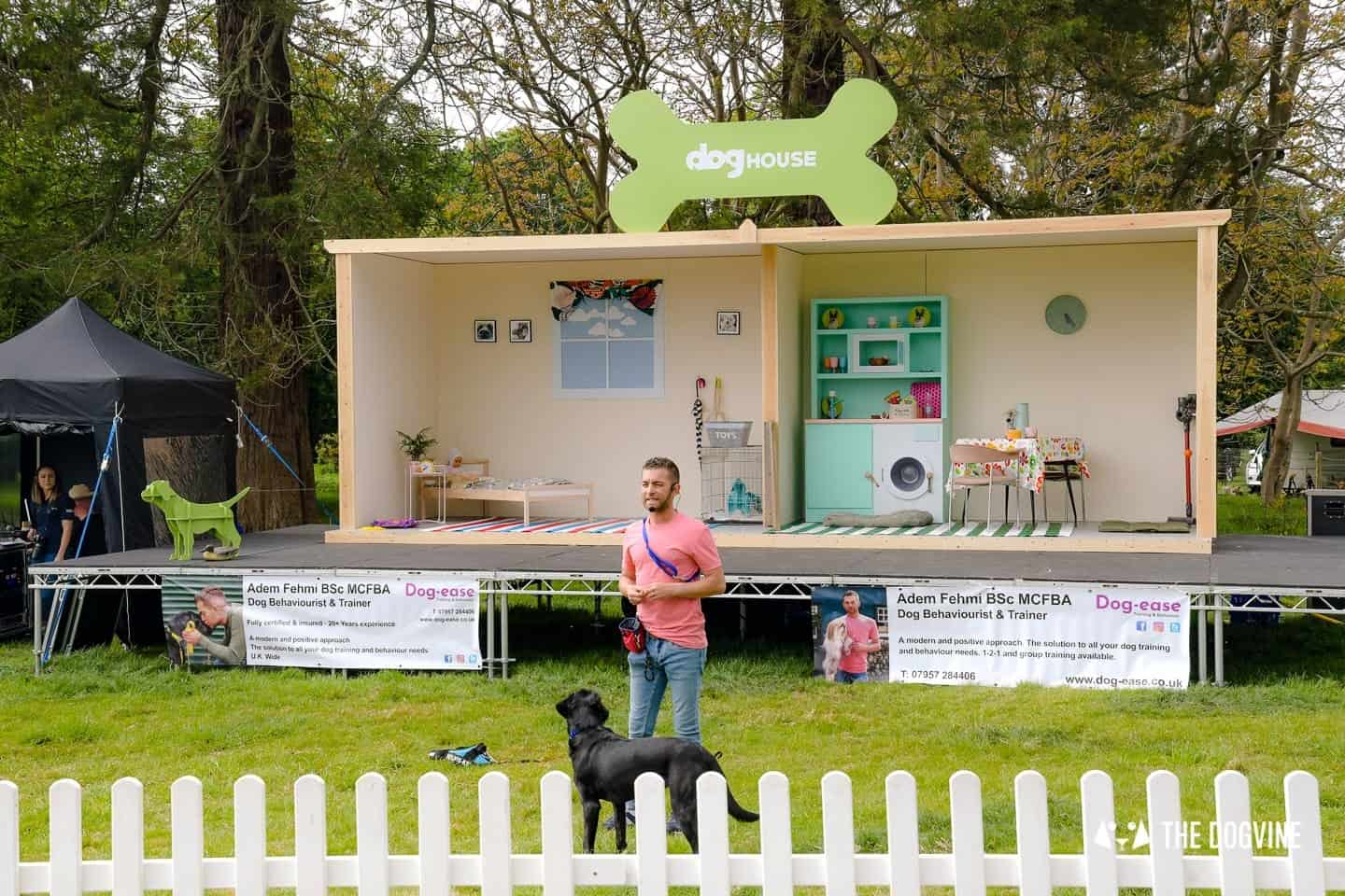 Dogstival New Forest Dog Festival Is A Barking Success 2