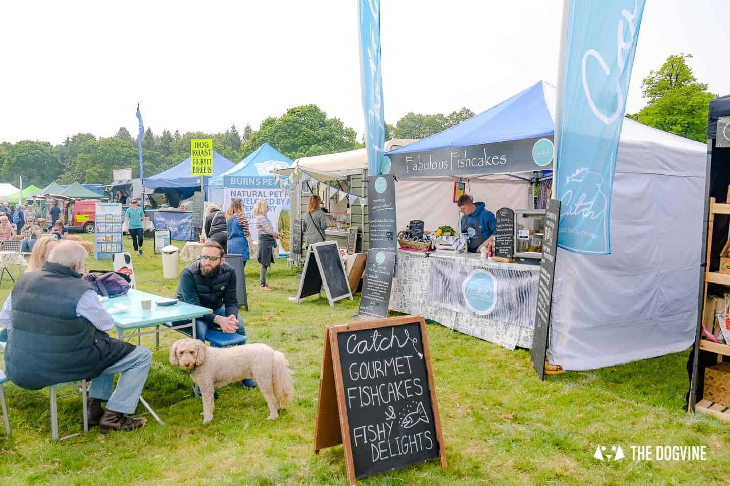 Dogstival New Forest Dog Festival Is A Barking Success 58