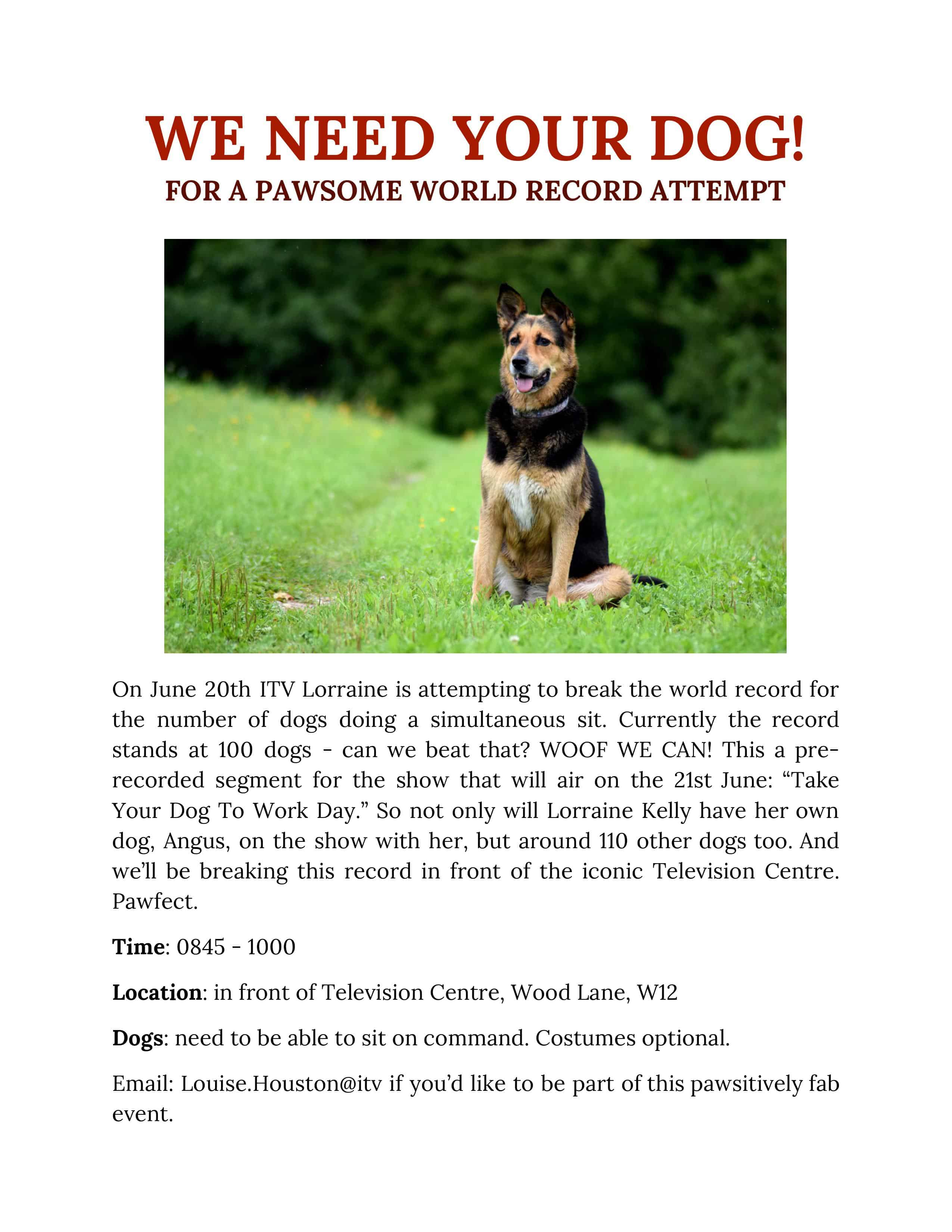 ITV World Record Attempt for Dogs Poster