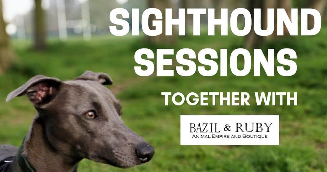 Sighthound Sessions Walk Twickenham
