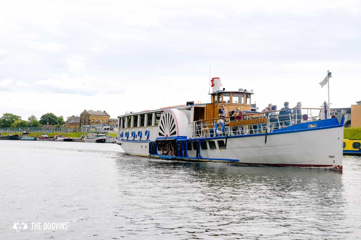 Dog-friendly Go Boat Kingston Upon Thames 2