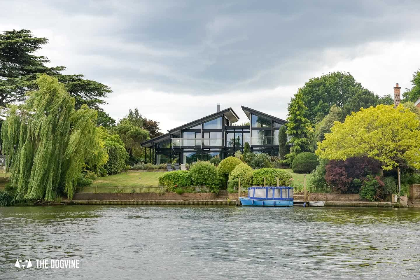 Dog-friendly Go Boat Kingston Upon Thames 4