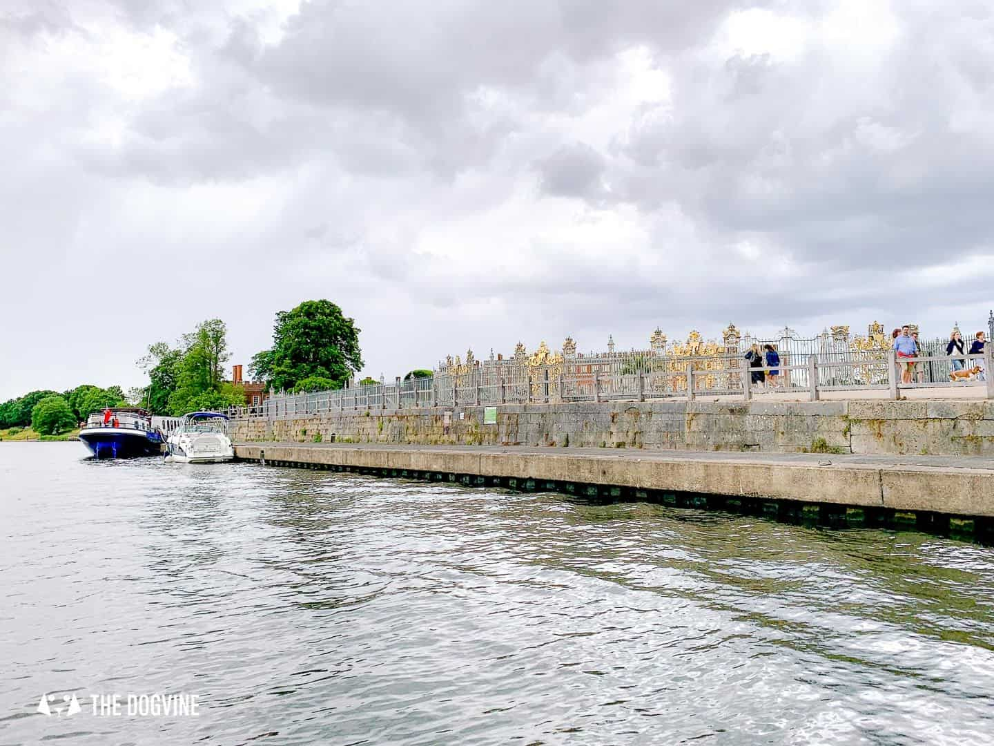Dog-friendly Go Boat Kingston Upon Thames 42