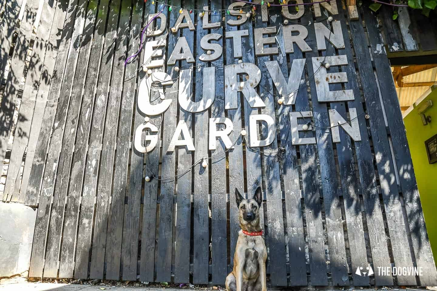 Dog-friendly London The Best Free Dog-friendly Things To Do - Dalston Eastern Curve Garden 1