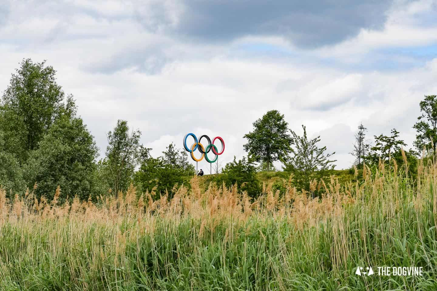 Dog-friendly London The Best Free Dog-friendly Things To Do - Olympic Rings Lee Valley