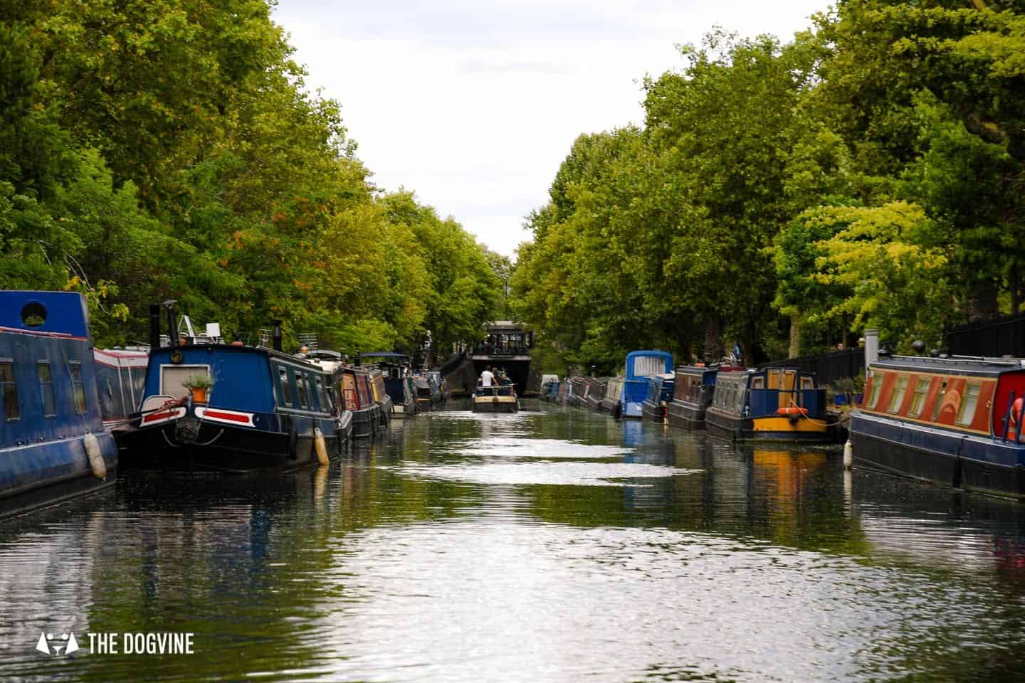 Dog-friendly London The Best Free Dog-friendly Things To Do - Regent's Canal