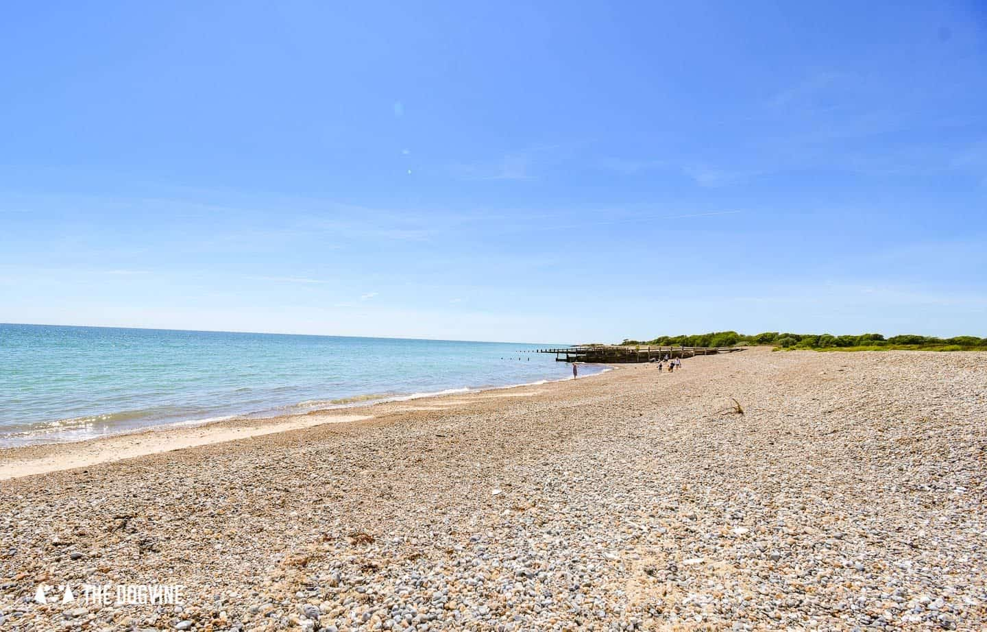 The Best Dog-Friendly Beaches in West Sussex - Climping Beach 3