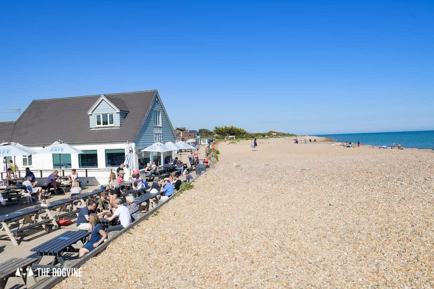 The Best Dog-Friendly Beaches in West Sussex - Ferring Beach and Bluebird Cafe