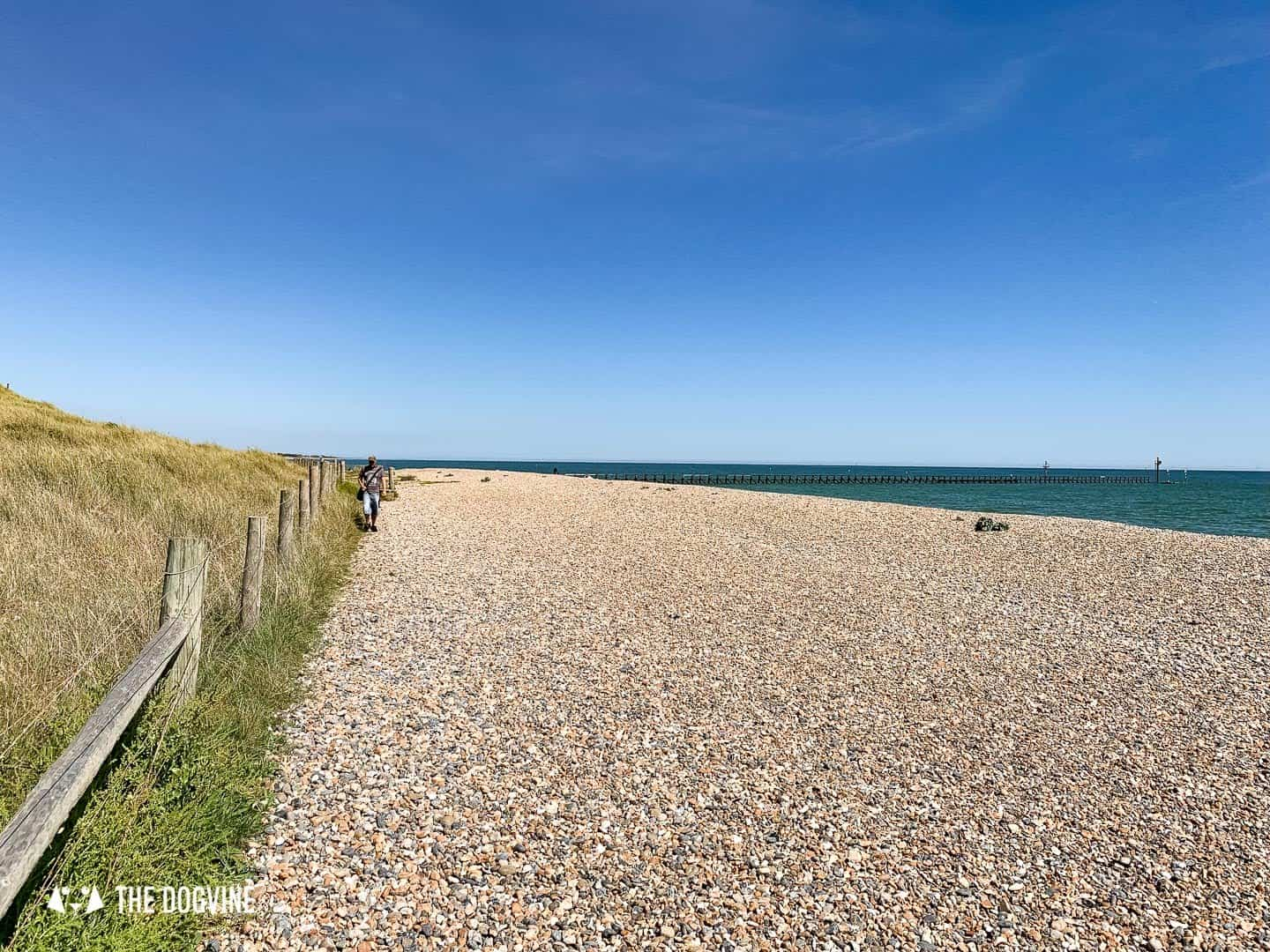 The Best Dog-Friendly Beaches in West Sussex - Littlehampton West Beach