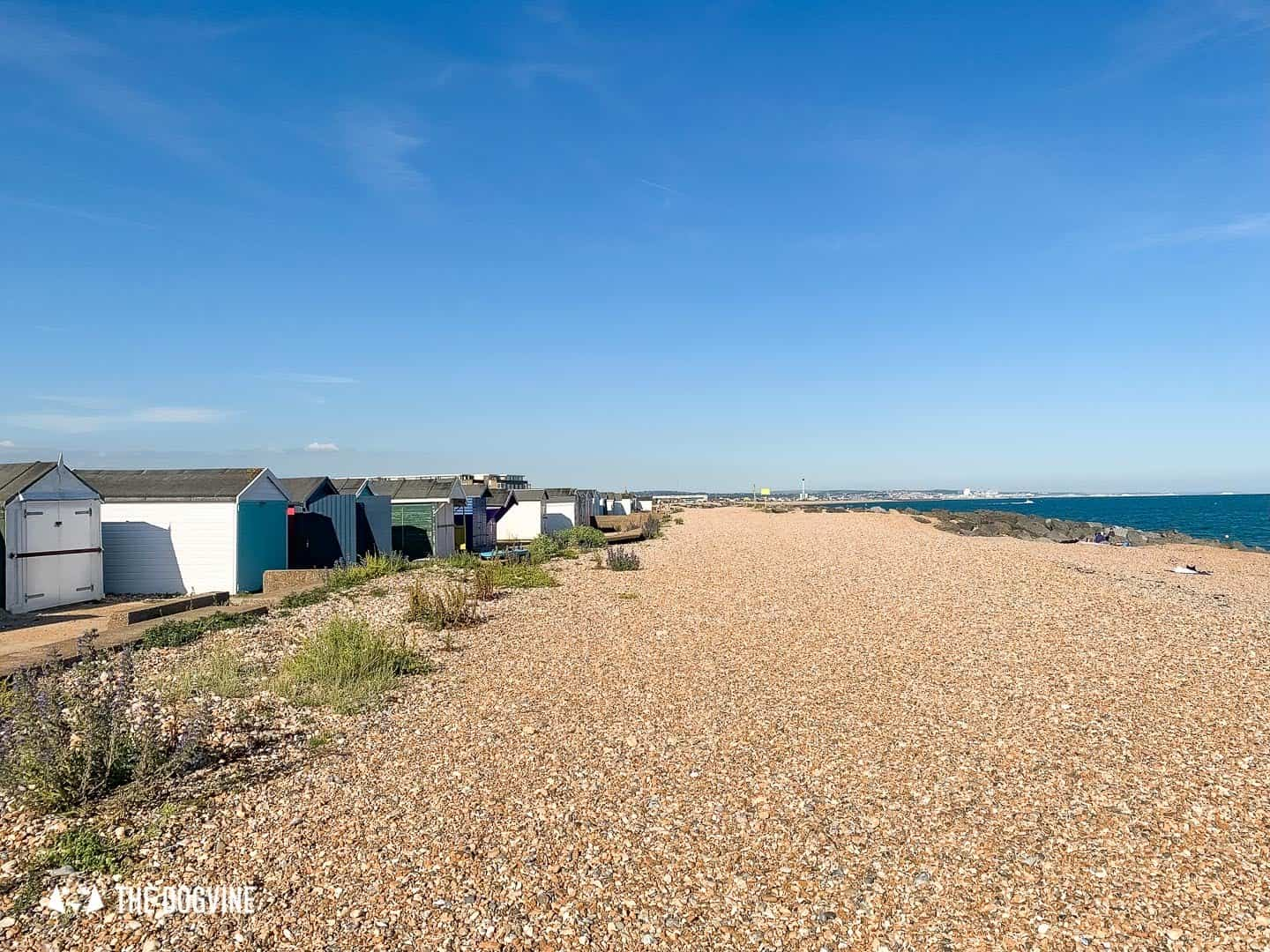 The Best Dog-Friendly Beaches in West Sussex - Shoreham by Sea 1