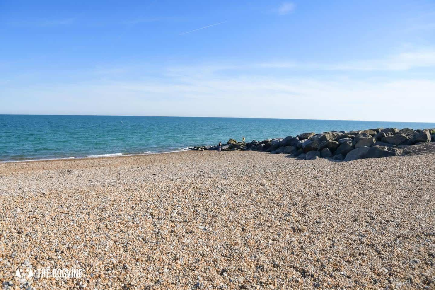 The Best Dog-Friendly Beaches in West Sussex - Shoreham by Sea 3