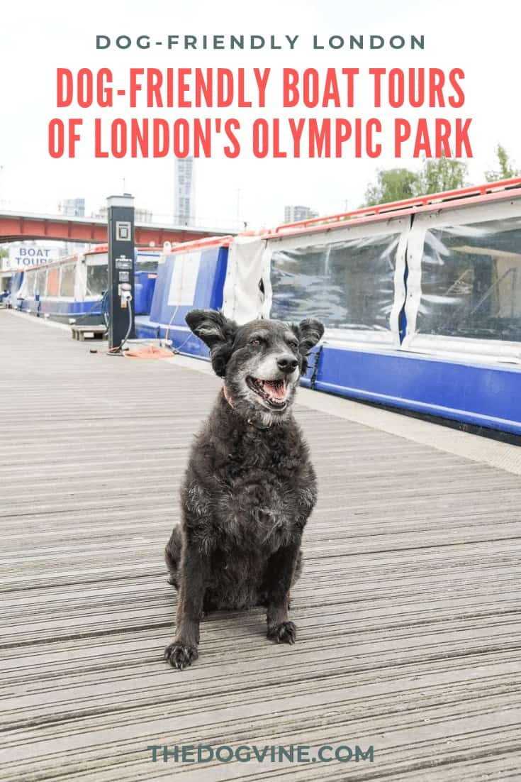 DOG-FRIENDLY BOAT TOURS QUEEN ELIZABETH OLYMPIC PARK LONDON