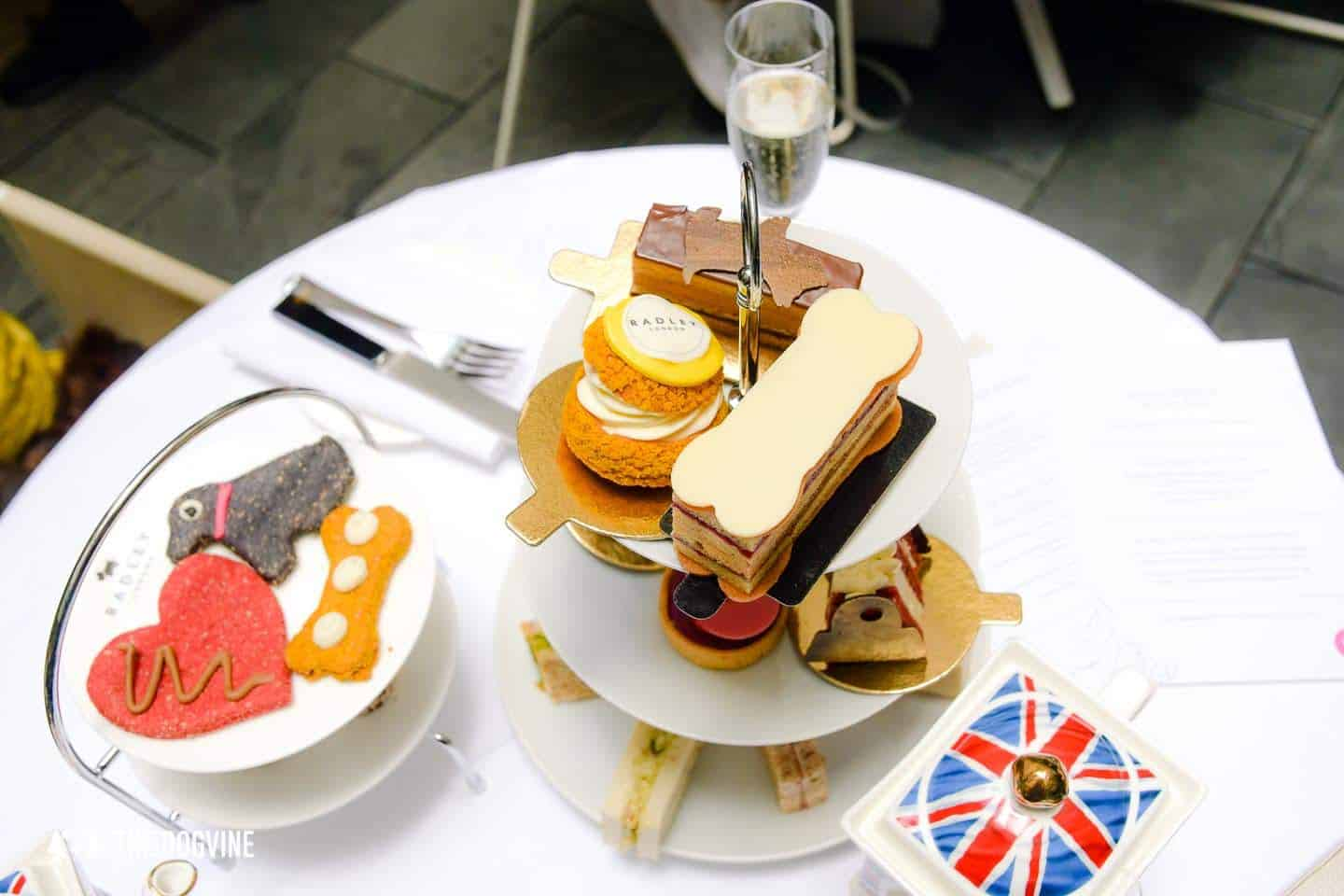 Dog-friendly Afternoon Tea Radley x South Place Hotel Posh Pooch High Tea 6