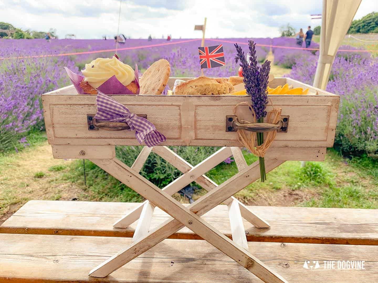 Dog-friendly Mayfield Lavender Farm - Afternoon Tea