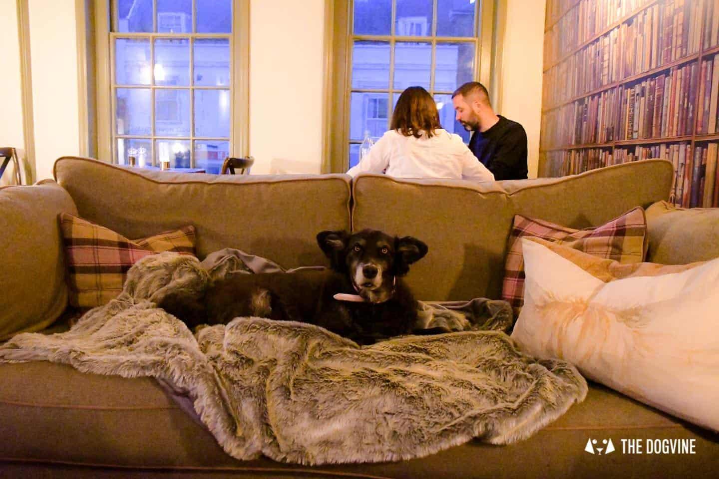 Dog-friendly Stanwell House Hotel Lymington 25