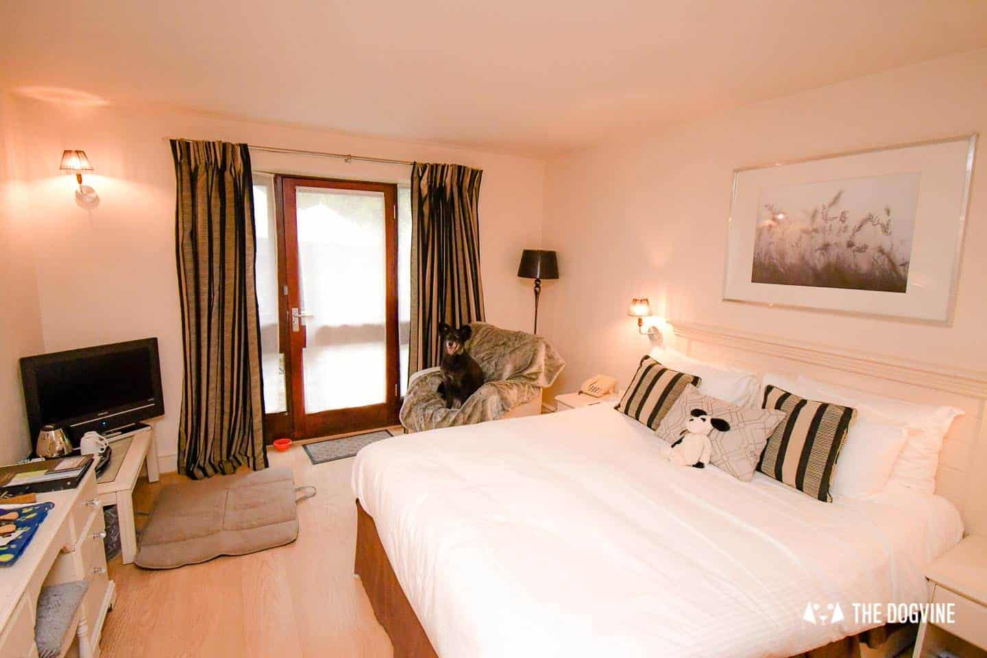Dog-friendly Stanwell House Hotel Lymington 5
