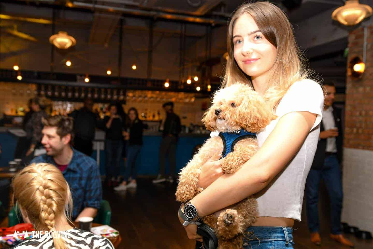 London Dog Events and Things to Do August 2019 - Dog Friendly Cinema