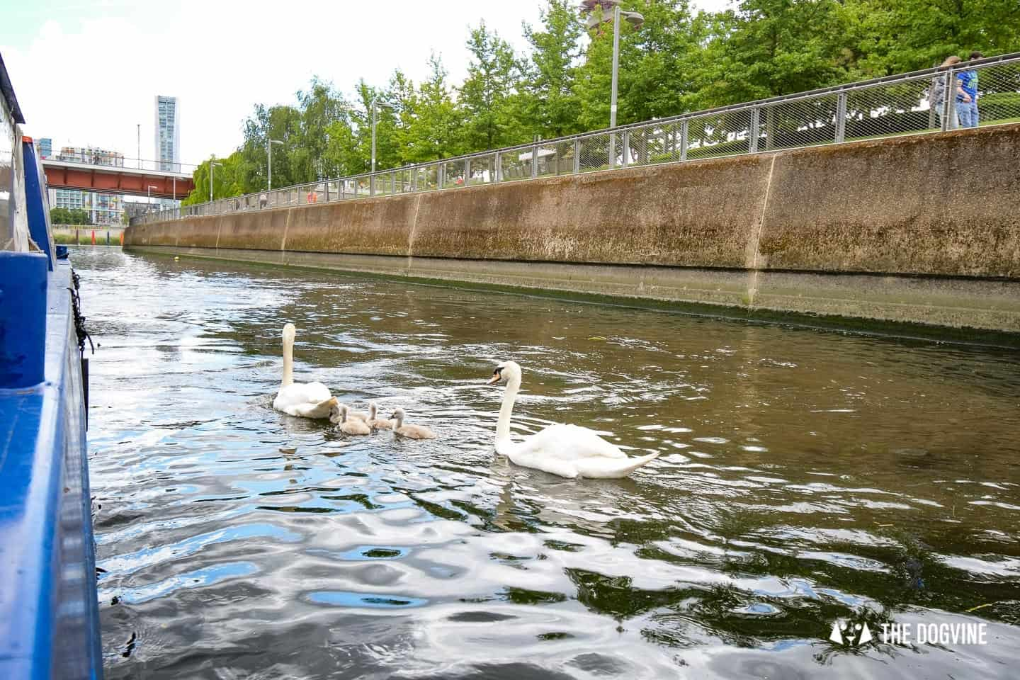 Queen Elizabeth Olympic Park Dog-friendly Boat Tours London - Lee and Stort 16