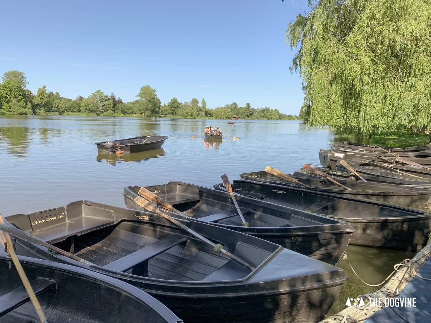 8 Reasons To Visit the Stunning Dog-friendly Hever Castle 4