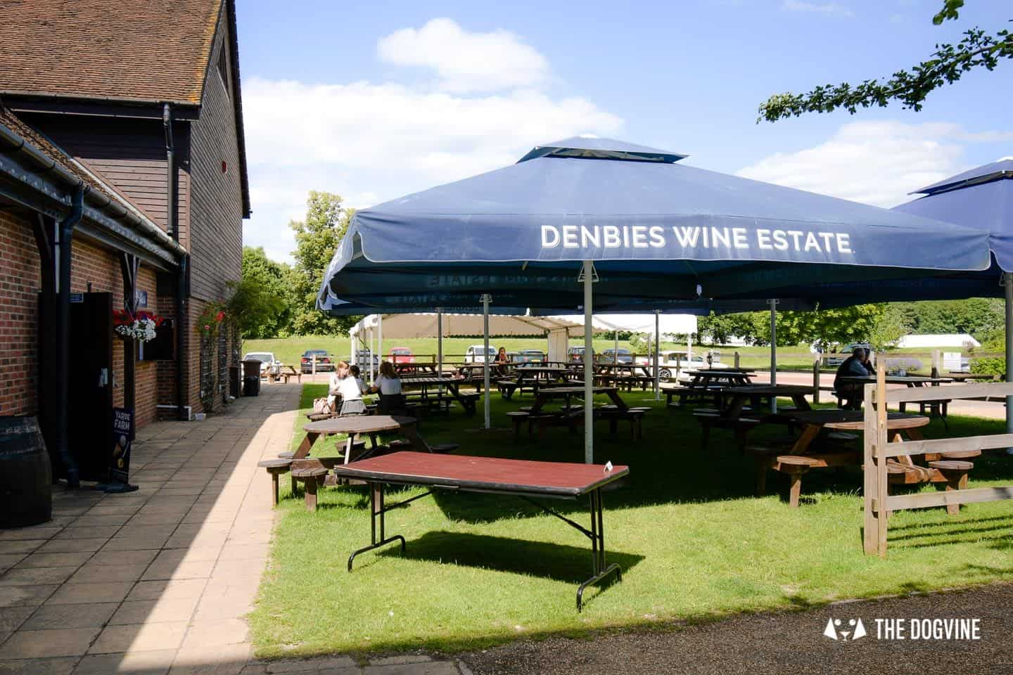 Denbies Dog-friendly Vineyard | A Delightful Day Out 13