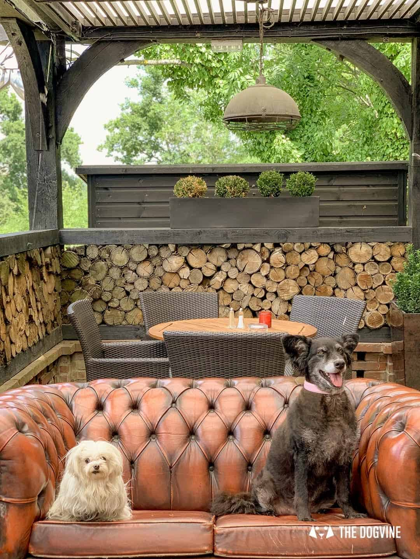 Dog-friendly King Henry VIII Pub Hever 3