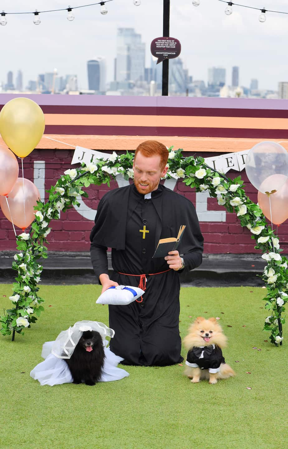London Dog Wedding At The Rooftop Film Club Wooftop Wedding Service 6