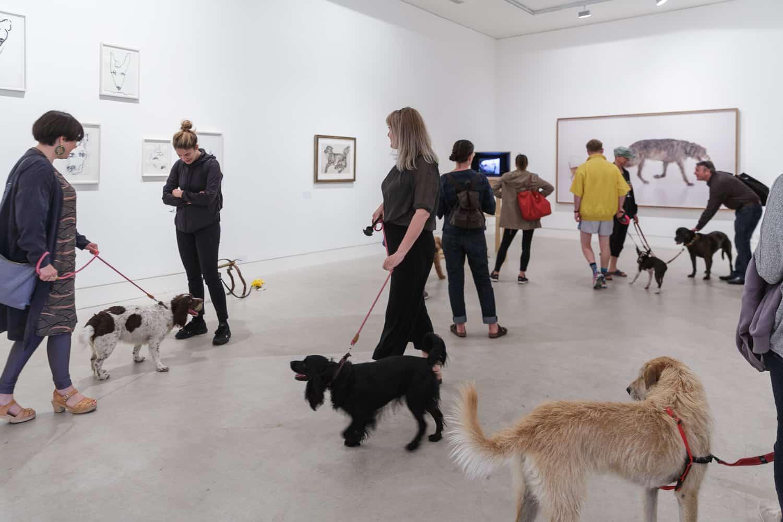 Southwark Park Galleries Dog Show Exhibition