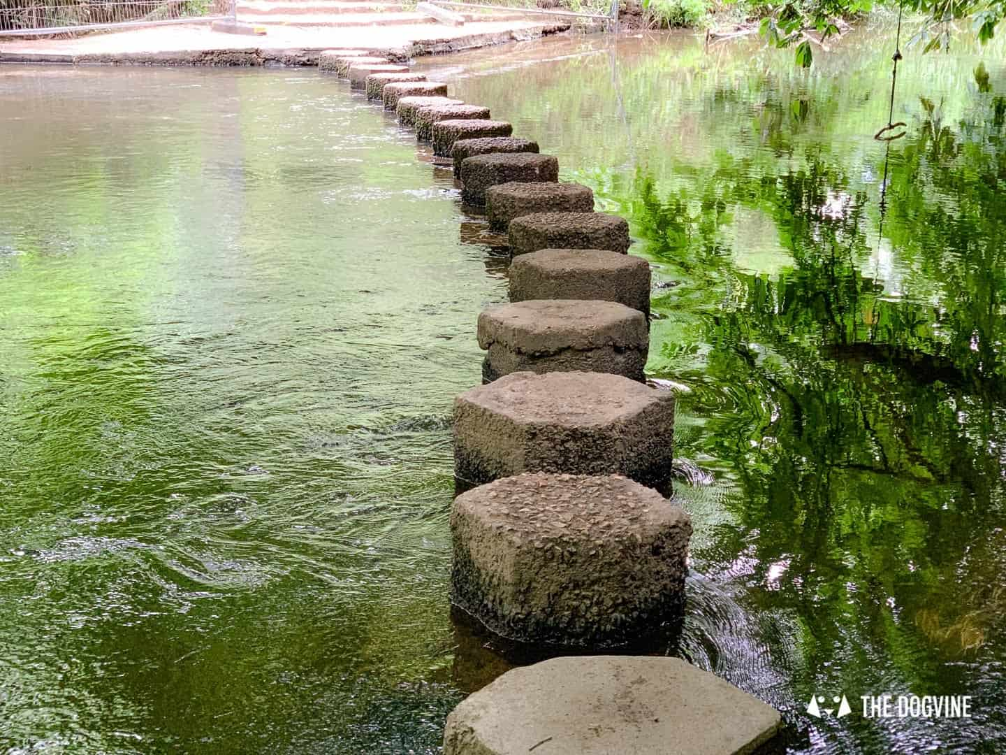 Stepping Stones River Mole 3