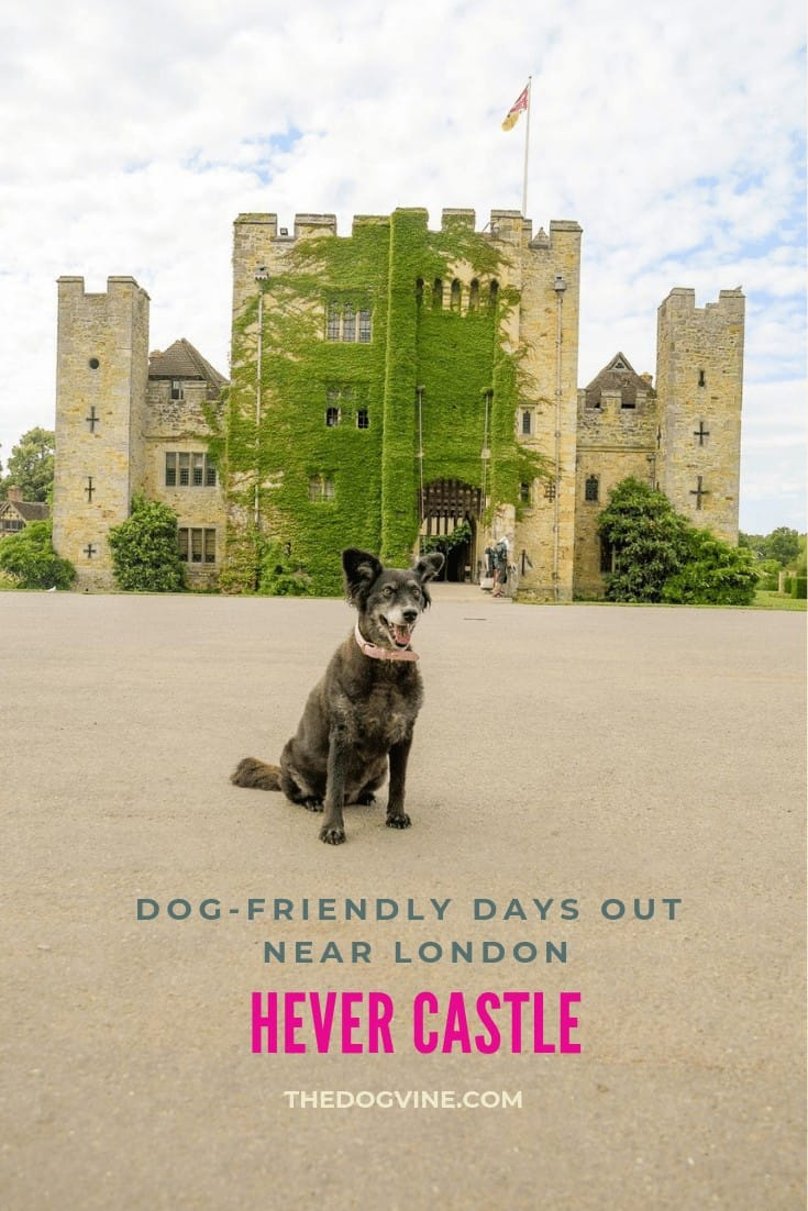 Visit Kent's Dog-friendly Hever Castle With Your Dog