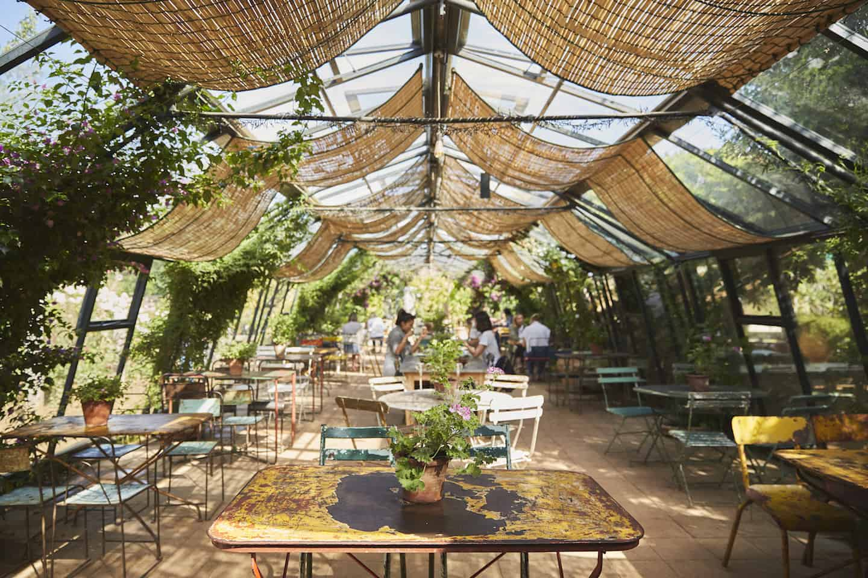 Best Dog-friendly Afternoon Teas in London - Petersham Nurseries Richmond Glasshouse