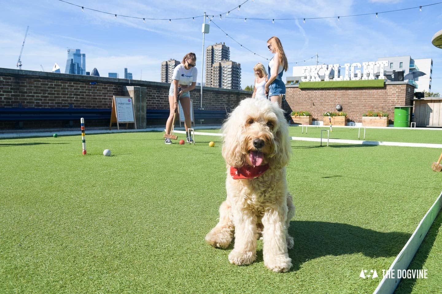 Every Day is a Dog Day At Dog-friendly Skylight London -6